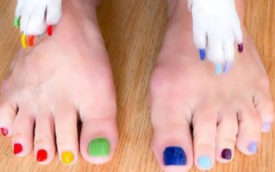 Pet-icure ~ Is This Really A Thing?